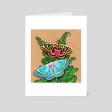 Moths & Ferns  - Art Card by Morgan Davidson