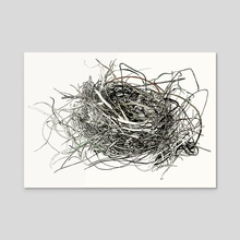 Nest Study - Acrylic by Sam Pash