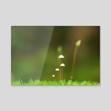 Marching Mushrooms - Canvas by Just_Eirik