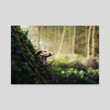 Couple Mushrooms - Canvas by Just_Eirik