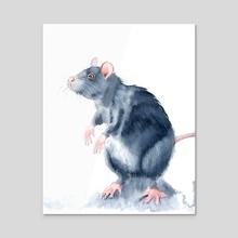 Rat - Acrylic by Olga Shefranov (PaintisPassion)