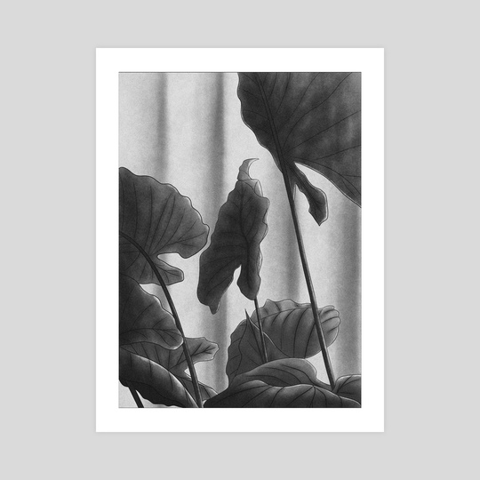 Leaves black and white by Shay aka nekai