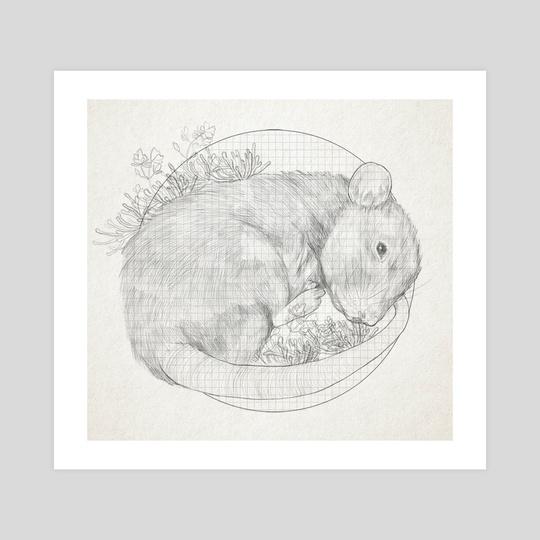 Pet Rat by Q Drachen