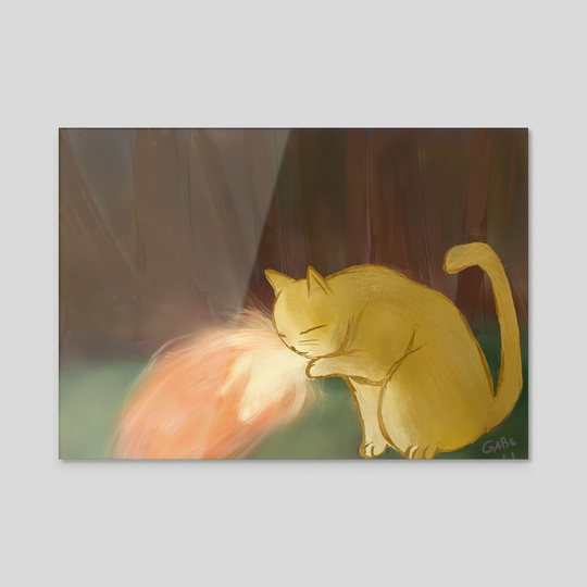 Fire cat by gabryel gonçalves