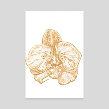 Gold Orchid I - Canvas by Paulina Navarro