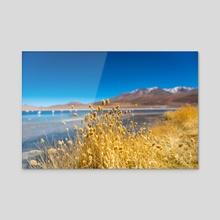 The Contrasting Landscape of Laguna Colorada - Acrylic by Namchetolukla
