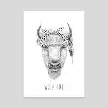 Wild one - Canvas by Balazs Solti