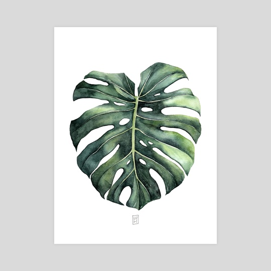 """Monstera leaf of """"Swiss Cheese Plant"""" by Luli Reis"""