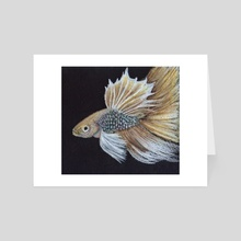 Rey the Dumbo Betta Fish - Art Card by Michelle Elizondo