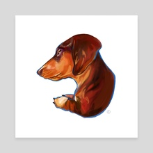 Dachshund - Canvas by Kendra Aldrich