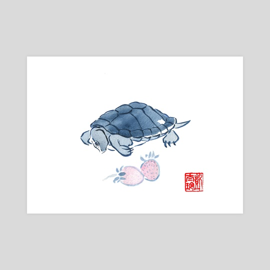 Turtle and Strawberries by Kate W