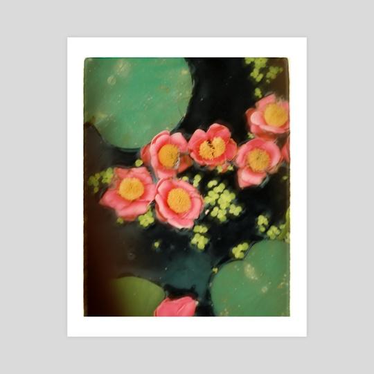 Lotus Flowers by Elena Fernández Rico