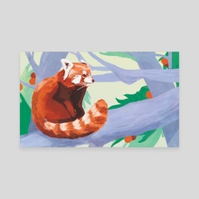 Red Panda - Canvas by Carson McNamara