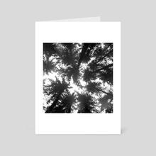 Pines - Art Card by Aleksei Fedotov