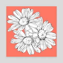 daisies - Canvas by Sammy