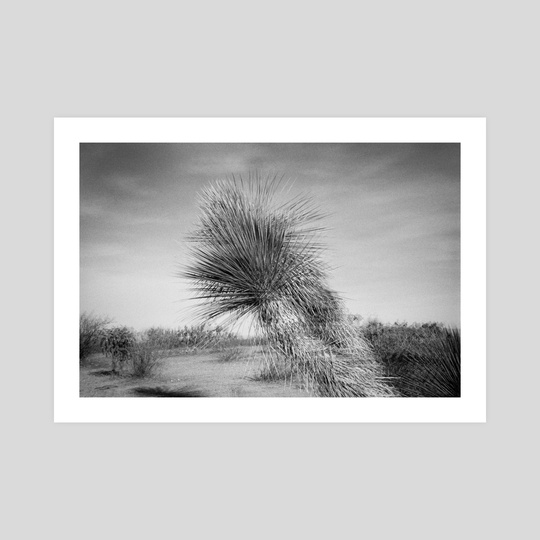 Double Exposure on Tanque Rd by Beau Devereaux