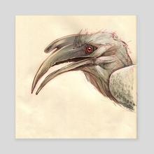 Indian Hornbill - Canvas by Ed Kersh