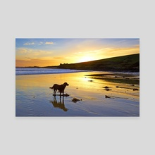 Howe Strand - Canvas by Michael Walsh