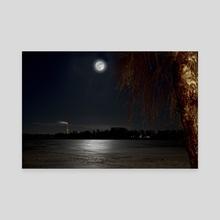 moonlight - Canvas by Stefan Demervall