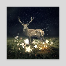 star collector - Canvas by Even Liu