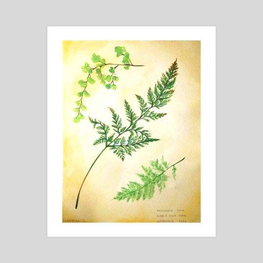Fern by Cassandra