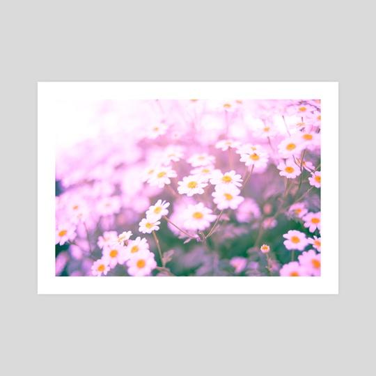 Pink Daisies I by Joana Lourenco