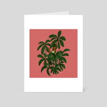 Schefflera - Art Card by Leia Ham