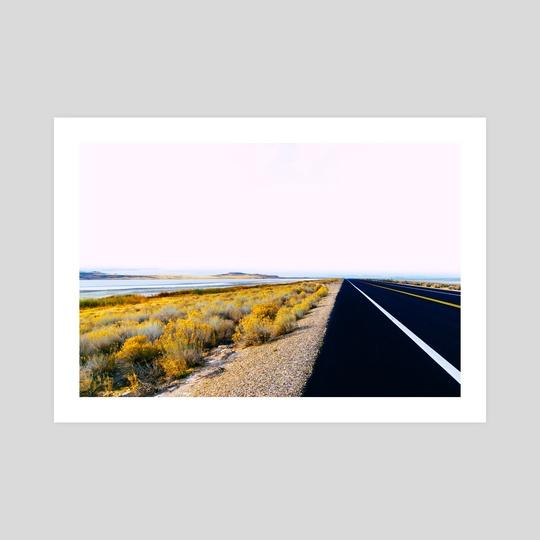 Along the Salt Flats by Alex Tonetti