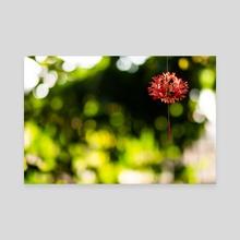 Red Hanging Flower - Canvas by John Mathi