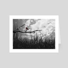 Scarlet Robin - Art Card by Jeremy Wittber