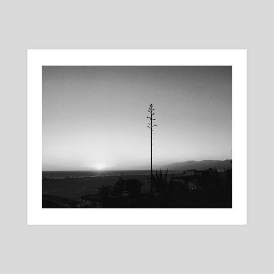 Santa Monica sunset by Anna Tsvell