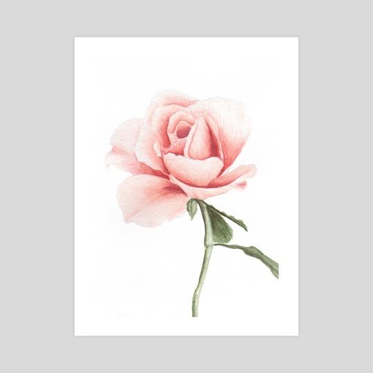 Watercolor rose by Tassiane Wanderweger