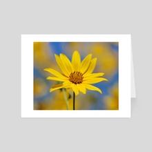 SunFlower - Art Card by Carolynn Elwell