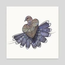 Turtle Dove - Canvas by Zanna Field