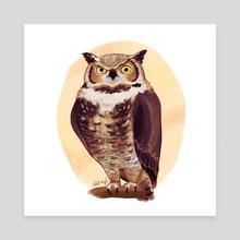 Grumpy Owl - Canvas by Melissa Falconi