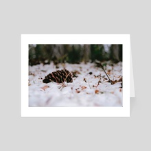 Pinecone - Art Card by Cobie French