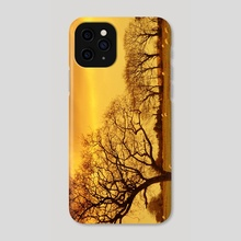 Aghadoe - Phone Case by Michael Walsh