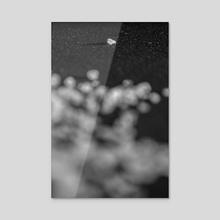 ISOLATO DE SAL - Acrylic by Alan Mariscal