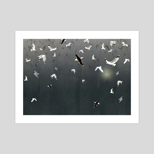 seagulls by Lara Paulussen