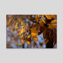 Autumn Leaves III - Acrylic by Ashley Gedz