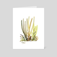Desert Buddies - Art Card by Sarah Jacoby