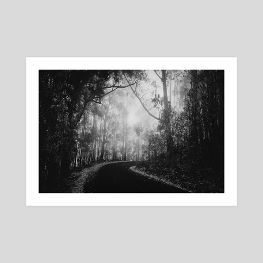 Misty Dark Road by Diogo Pereira