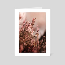 Pink Fire - Art Card by Jonas G Wilhelmsen