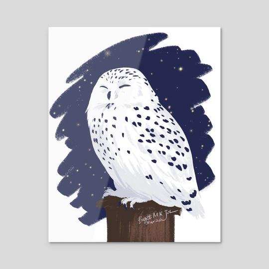 Snowy Owl by Birgitte Johnsen