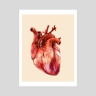 Heart Study - Art Print by Morgan Davidson