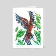 perroquet - Art Card by celine espitallier