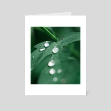 Morning dew - Art Card by Anton Popov