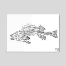 Fishbone - Acrylic by Marta Rivera