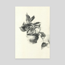 pothos - Canvas by James Lee Chiahan