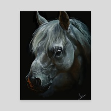 White horse emerging from the dark - Canvas by Lilya Ruiz